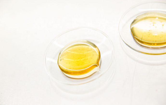 Quality of Australian honey from native botanicals using novel harvesting technologies